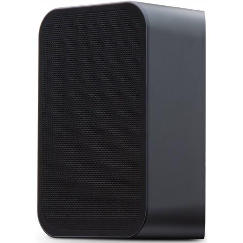 Bluesound PULSE FLEX 2i Portable Wireless Multi-Room Music Streaming Speaker (Black)