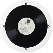 Degritter 10-Inch Record Adapter