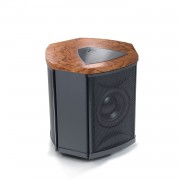 MartinLogan Depth i Powered Subwoofer Bubinga (Manufacturer-Renewed)