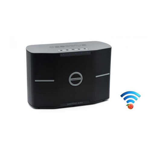 Peachtree Audio deepblueSKY Wireless Multi-Room Speaker