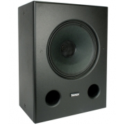 Tannoy DC12i Home Theater LCR Speaker